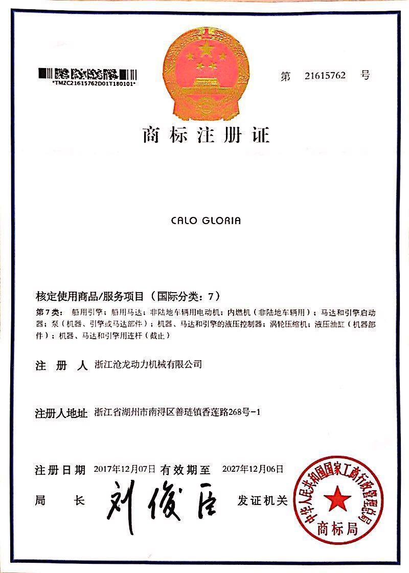 Category VII trademark certificate
