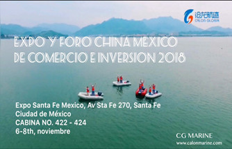 Our Company Is Holding Exhibition In Mexico